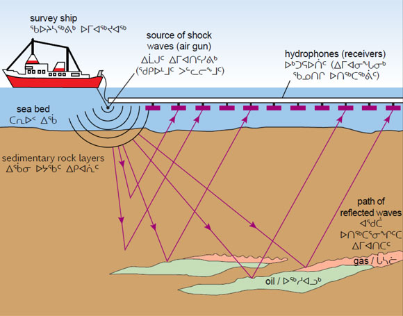 Seismic survey conducted to collect information on the geological conditions below the sea floor