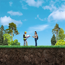 Two people standing in a field surrounded by trees and